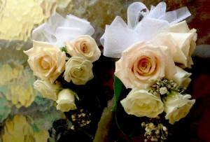 corsage, sahara rose, white mini rose, gypsophila